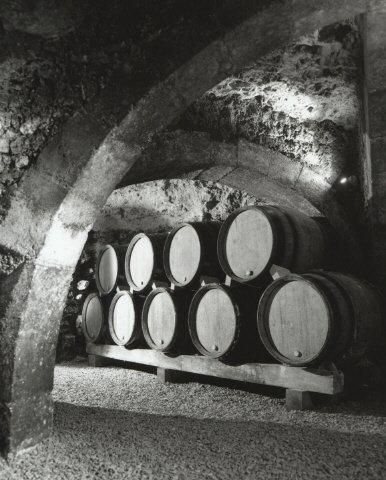 Cave XIème Domaine Goisot Jean-Hugues et Guilhem