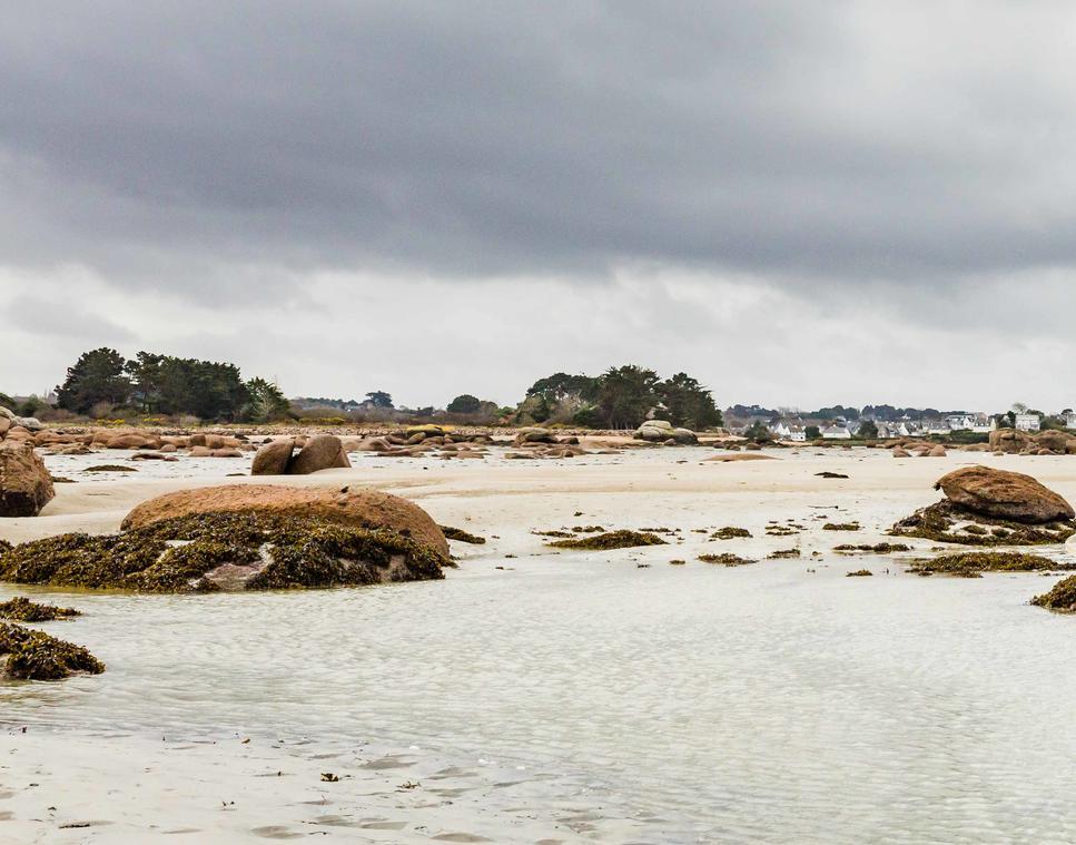 L'Oeil-de-Paco--plagemareebasse