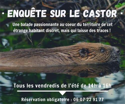 Maison reserve naturelle - Enquete sur le castor