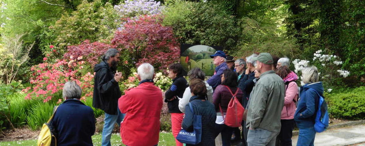 visites botaniques les dimanches rhodo