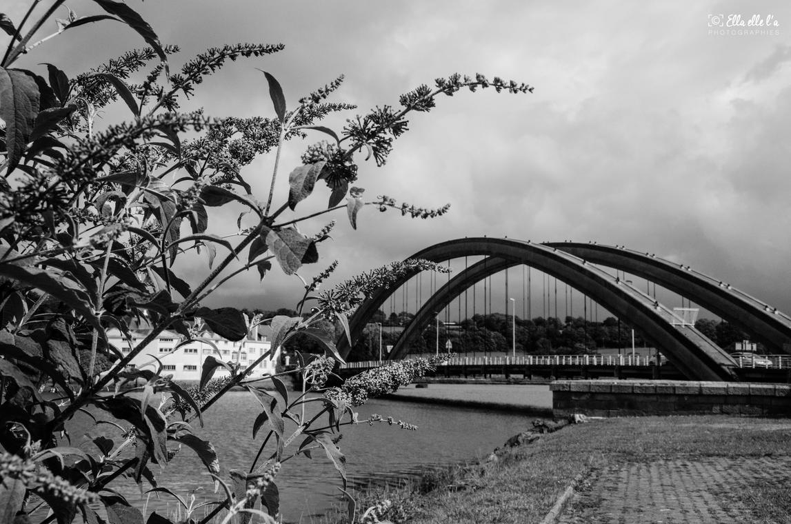 Pont Canada