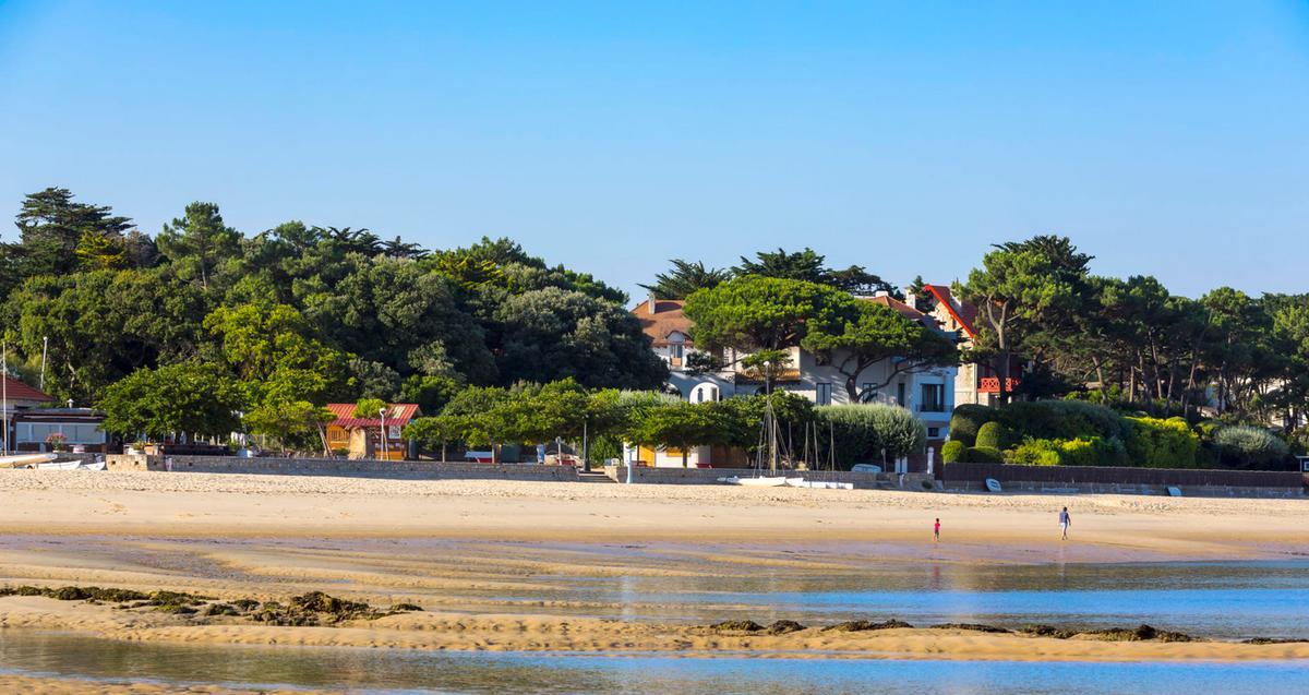 arbousier plage