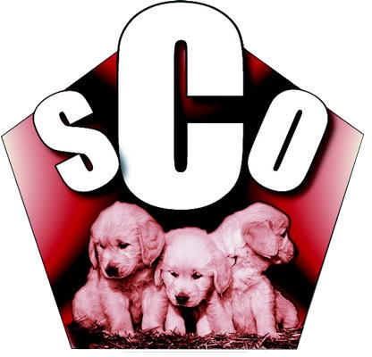 589548_logo-sco-chiots