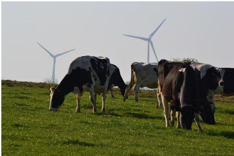 Circuit des éoliennes n°27