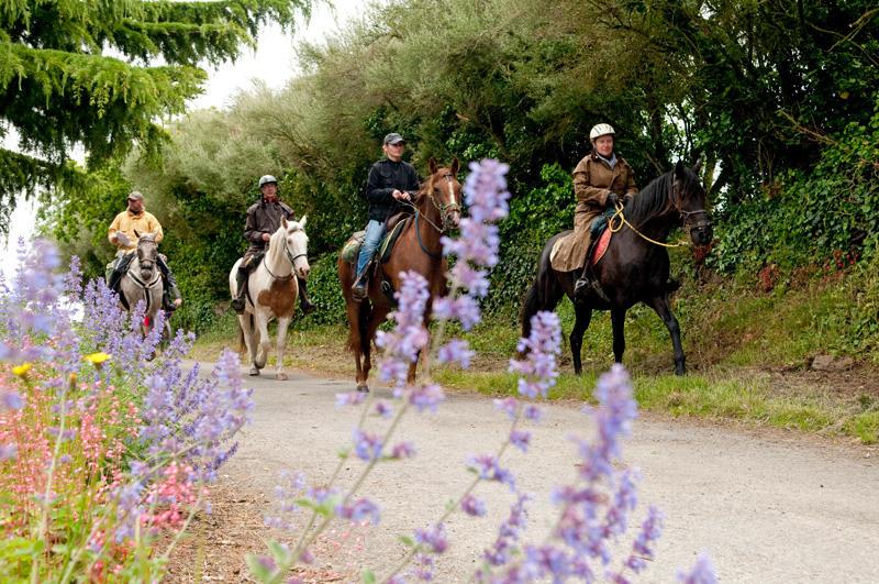 Centre équestre et poney club de Hac à Saint-Gondran
