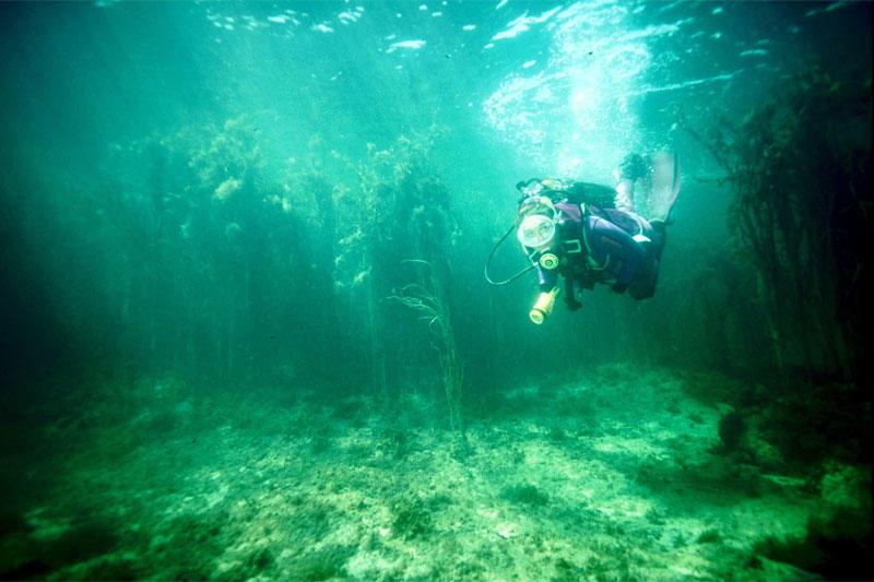 Atlantis Bretagne Plongée