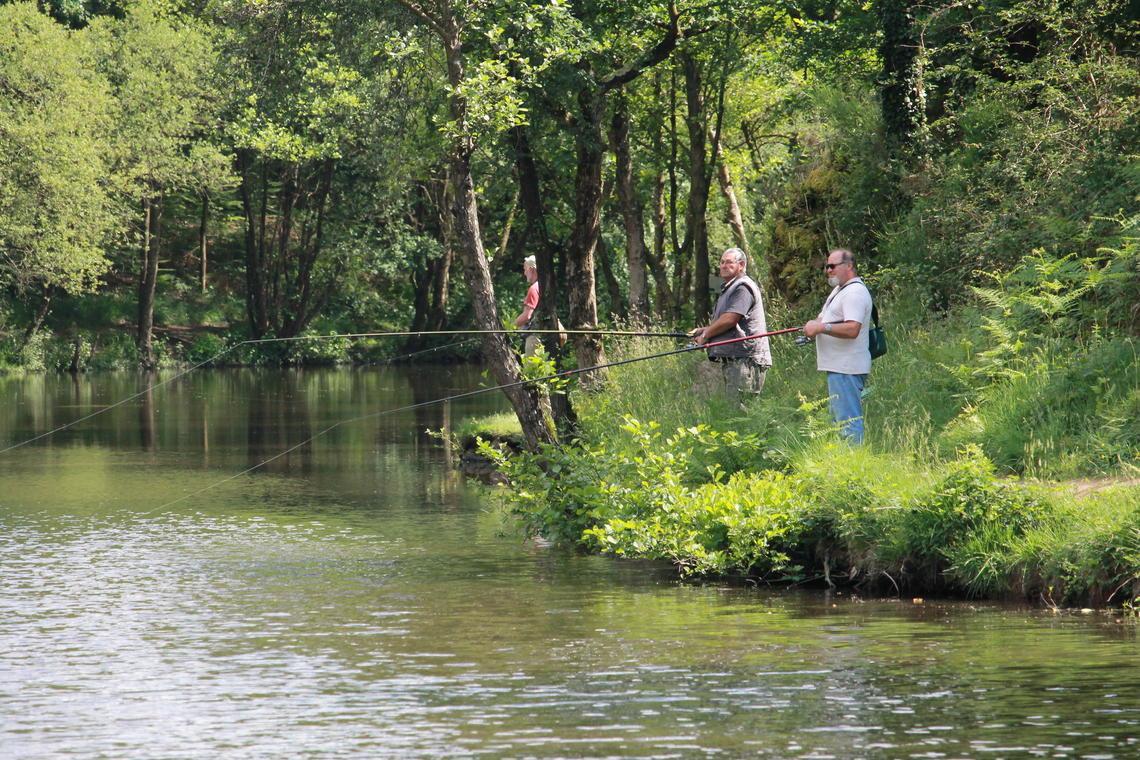 Pêche au vallon de la Chambre au loup Iffendic