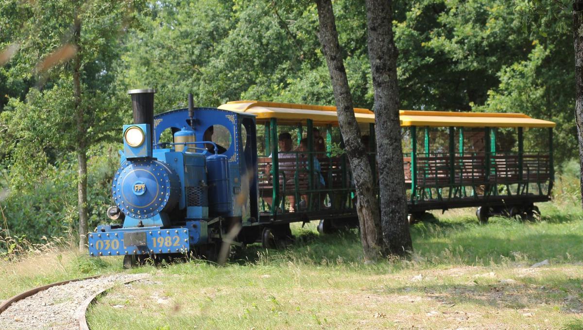 Diverty-Parc-train