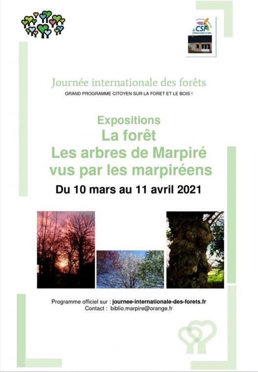 Exposition la foret - les arbres de marpiré vus par les marpiréens