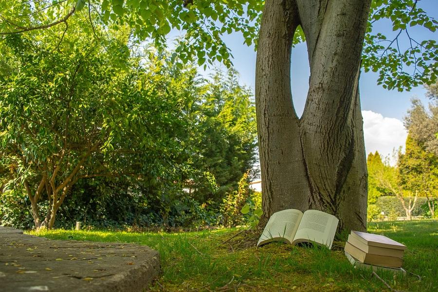 Lire en extérieur