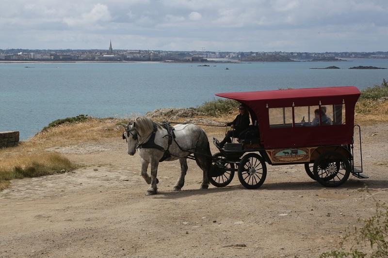 Loisirs-Les Chevaux de la Mer-Saint-Malo