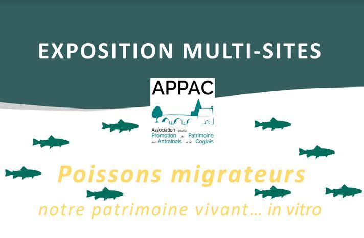 Poissons migrateurs