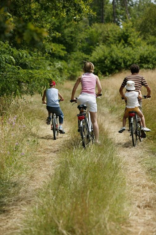 En vélo sur les chemins