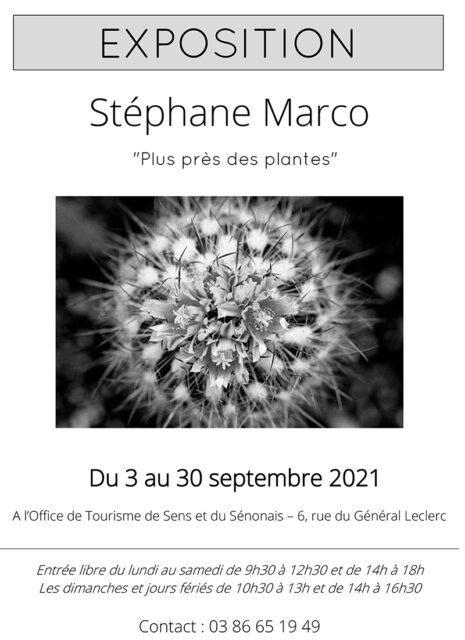 Affiche-Stephane-Marco-Plus-pres-des-plantes-465x640