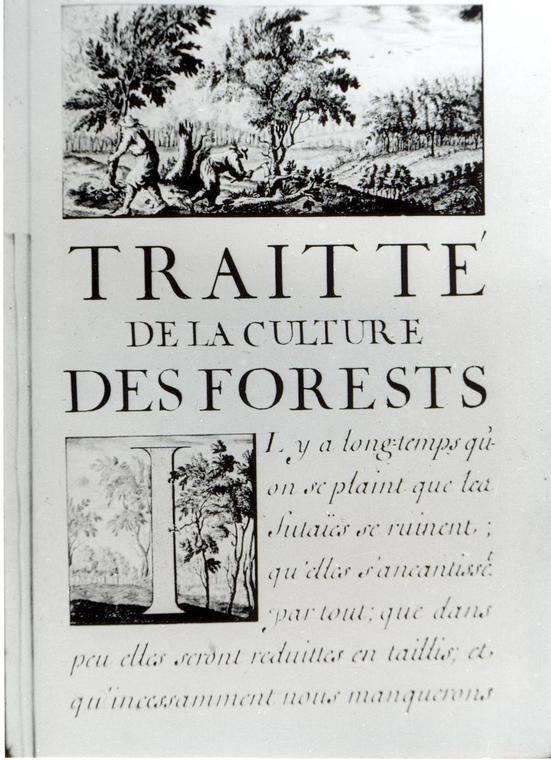 Visuel-Traite-sur-la-foret