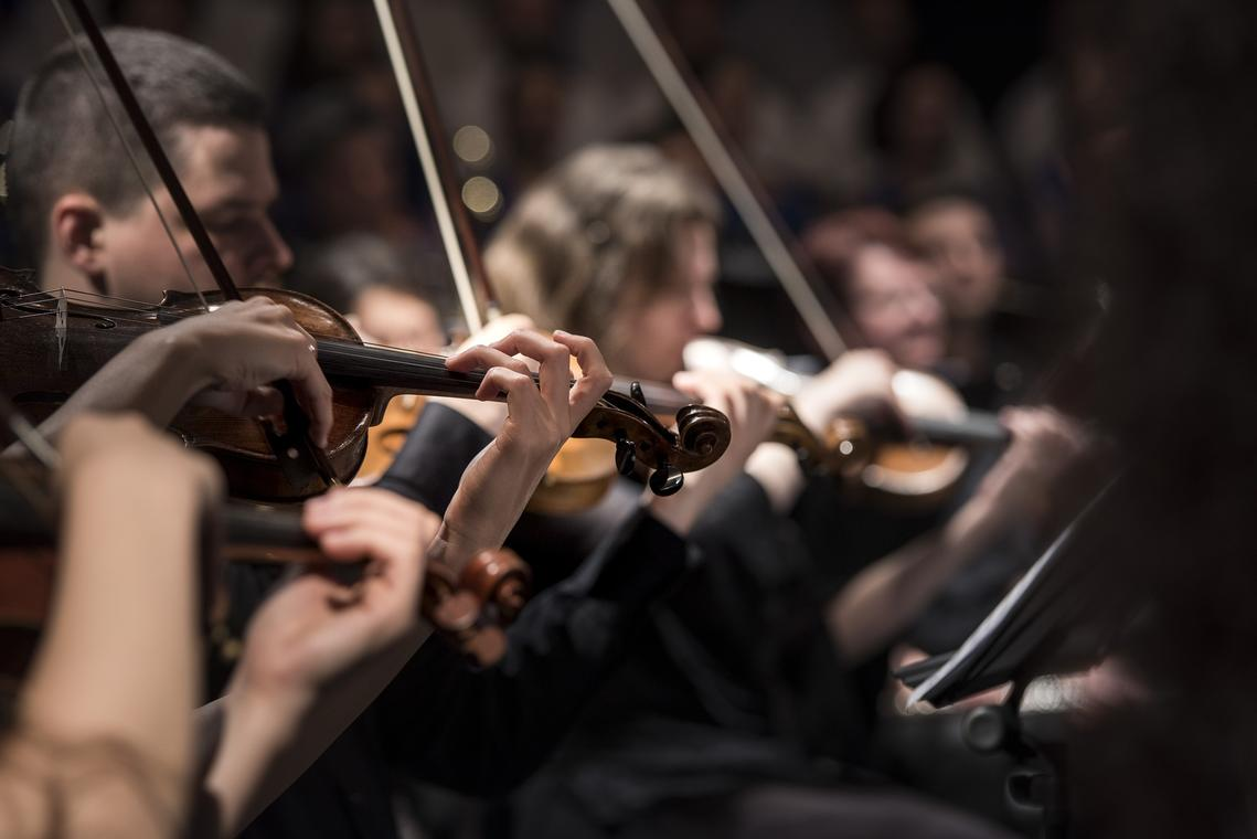 violins-1838390_1920