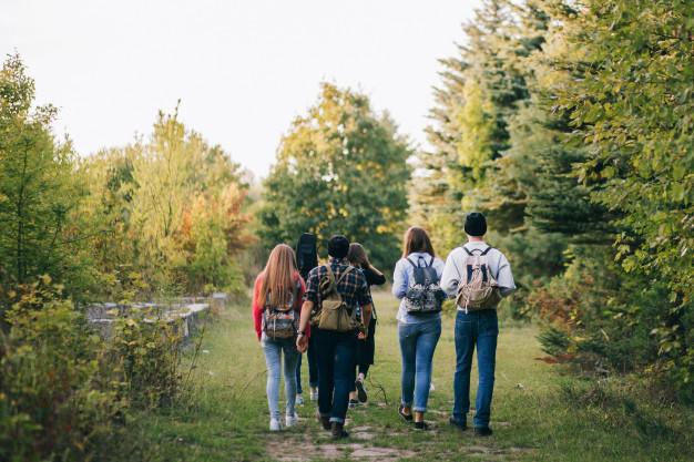 Amis promenade en forêt_© Pixabay