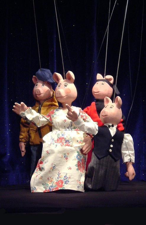 Les 3 Petits Cochons_redim 1075_amiens_somme_picardie