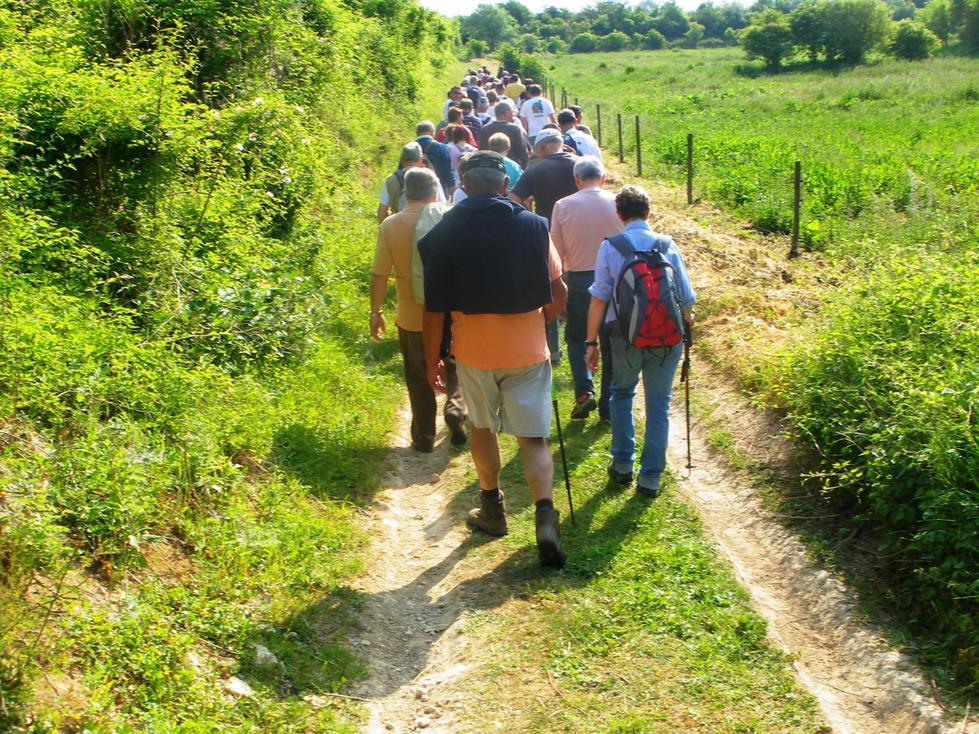 marcheurs < chemin < Aisne < Picardie