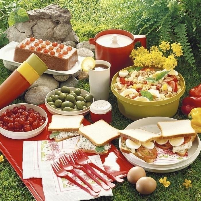 Pique-nique au Parc de loisirs de la Cimaise avec la  Maison de quartier Jacques Brel_1