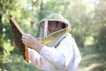 miel-herve-blanchard-st-mars-de-coutais-44-deg-1