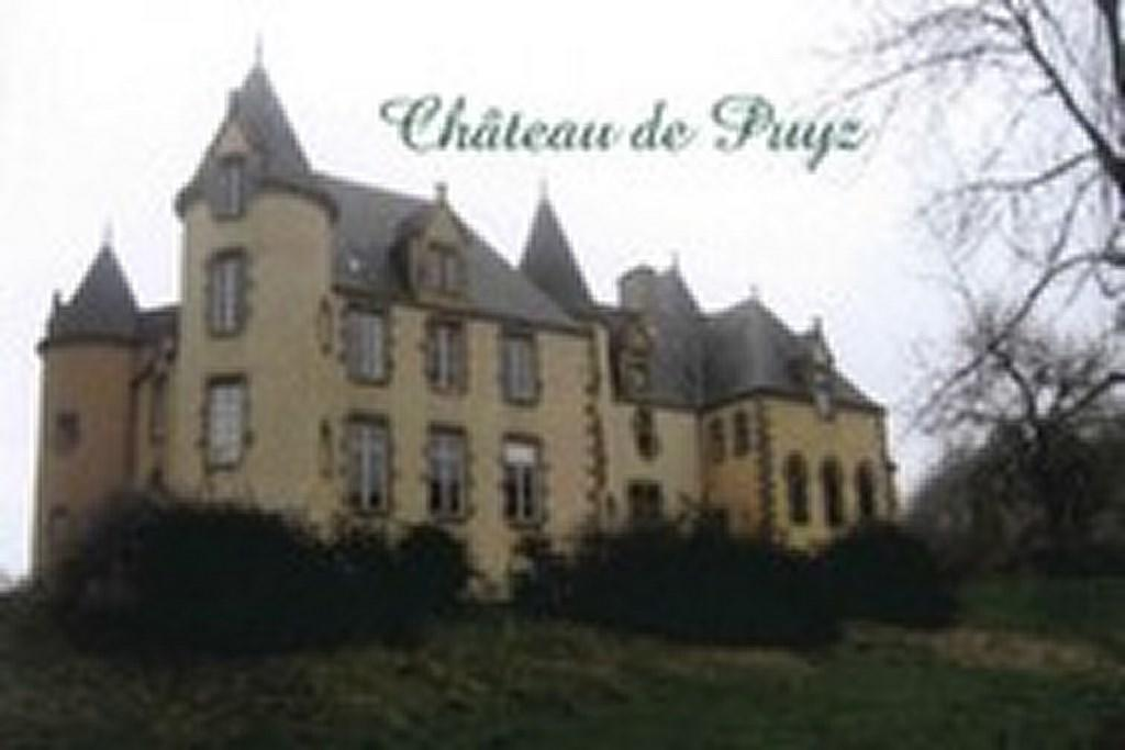 chateau_du_puyz (Copier)