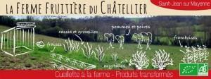 cueillette_a_la_ferme_3