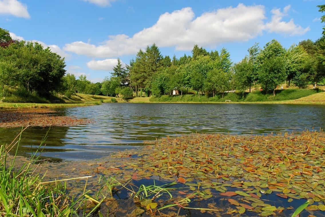 plan-d-eau-saint-mars-sur-la-futaie-53-loi-2
