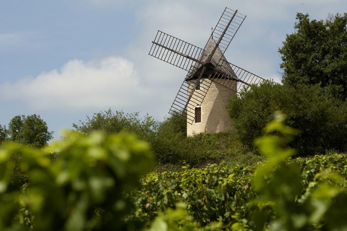Moulin Sorine -Santenay