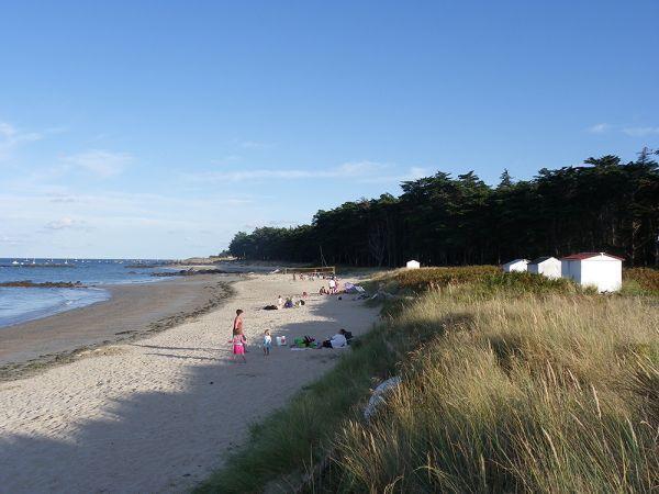 plage-des-sapins-ile-d-yeu-24744