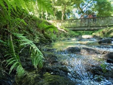 Circuit Au fil de l'eau - Bois d'Amour - Josselin - Morbihan - Bretagne