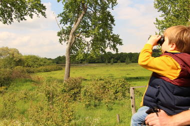Réserve ornithologique du domaine de Careil Iffendic©office de tourisme Lac de Trémelin (4)