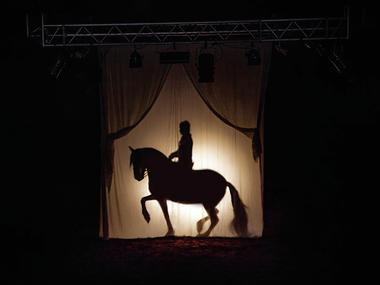 Théâtre équestre de Bretagne, La Gacilly, Destination Brocéliande, Bretagne
