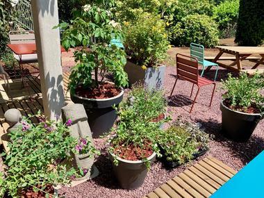 cote-jardin-maison-des-legendes-paimpont---2