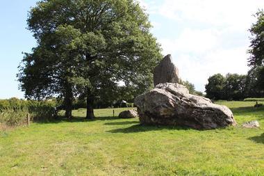 Aligmenents megalithiques de Lampouy Medreac