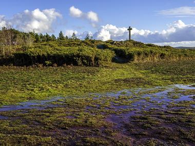 Paysage Campénéac - exposition paysages du territoire - Ploërmel