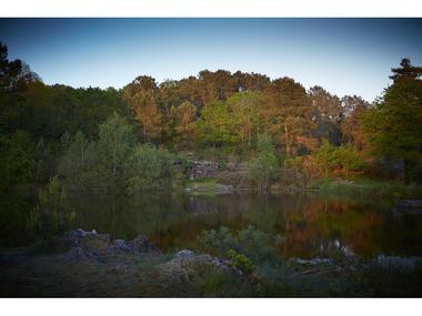 Site naturel-Landes de Monteneuf-Brocéliande-Bretagne