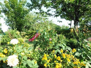 Gîté Brocéliande - jardin toboggan fleurs - Campénéac - Morbihan
