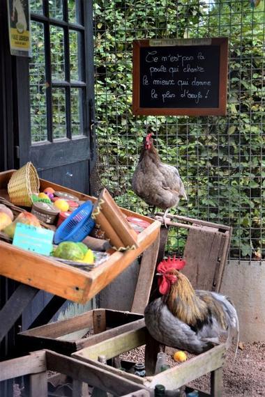 poulailler-epicerie-jardins-broceliande