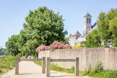 Bords de la Mayenne à Cantenay-Épinard