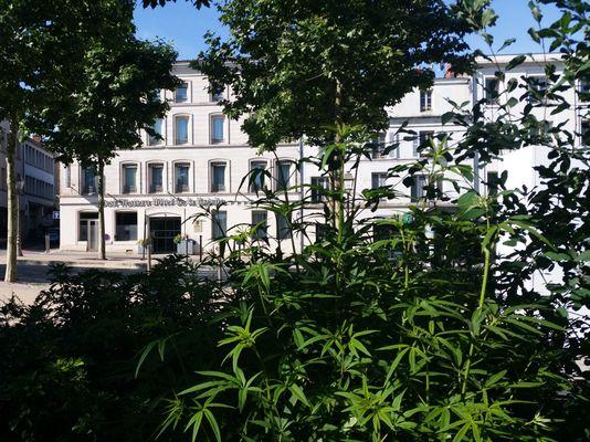 """Le Best Western """"Hôtel de la Brèche"""" à Niort"""