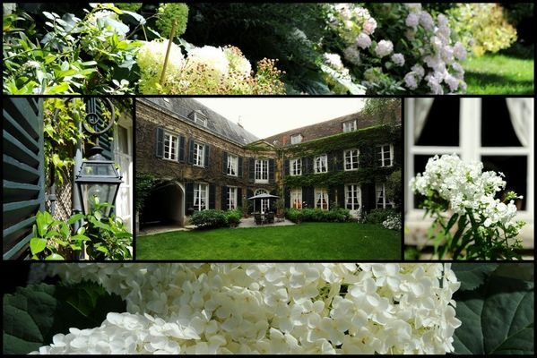 Le Jardin Cathédrale