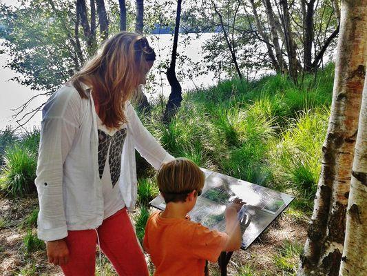 Balade avec des enfants autour du Lac de Trémelin Iffendic Brocéliande Bretagne