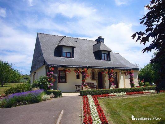 Bidan-Beignon-Morbihan-Bretagne-Sud