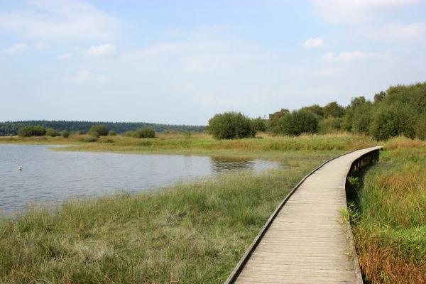 Domaine et étang du Boulet - Feins (6)