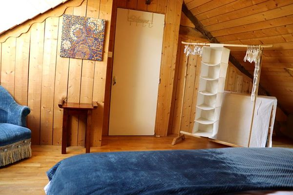 Epilobe chambre bleue 1