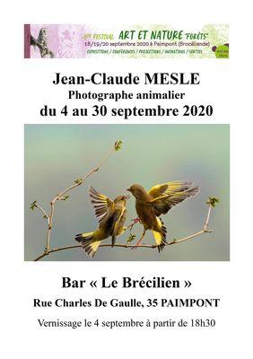 Expo_Jean Claude Meslé_Brécilien_Paimpont