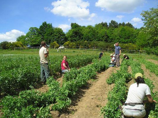 Les Jardins de Cahéran - AMISEP - Guillac - Morbihan - Bretagne