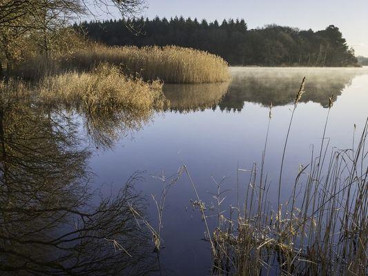 exposition - Envols - faune lac au Duc - Ploëmel - Morbihan