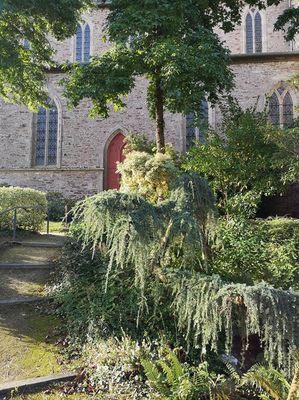 Eglise - Montauban de Bretagne